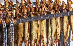 Приготовление рыбы холодного копчения
